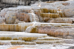 Mammoth Terraces, Yellowstone National Park, Wyoming, USA Stock Images