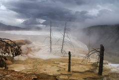 Mammoth thermal springs, Yellowstone park, USA Royalty Free Stock Photo