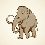 Mammoth. Vector drawing Stock Photography
