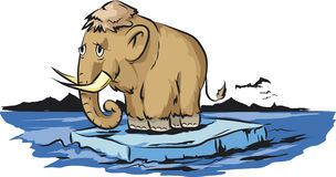 Mammoth. Vector illustration of sad mammoth who stands on melting iceberg Stock Photography