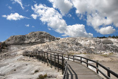 Mammoth Walkway Royalty Free Stock Photos
