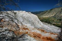 Mammoth Yellowstone Stock Image