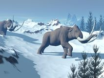 Mammoths walk Royalty Free Stock Photography