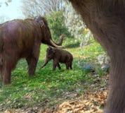 Mammouths laineux dans le pré images libres de droits