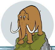 mammut Lizenzfreies Stockbild
