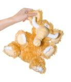 Mammut Lizenzfreies Stockfoto