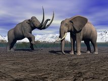 Mammut ed elefante Fotografia Stock Libera da Diritti