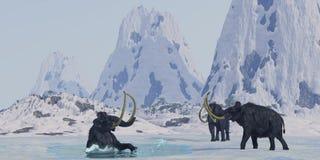 Mammut lanoso Immagini Stock Libere da Diritti