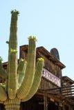Mammutsaal-Goldvorkommen, AZ Stockbilder