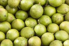 Mamoncillo delicious tropical fruit - Melicoccus bijugatus. Fresh ripe peeled quenepa fruit - Melicoccus bijugatus Royalty Free Stock Photo