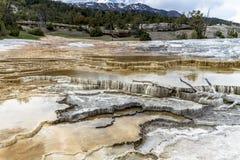 Mamoth gorące wiosny w Yellowstone zdjęcie stock