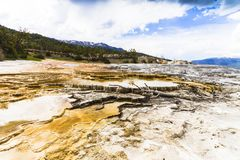 Mamoth hot springs royalty free stock images