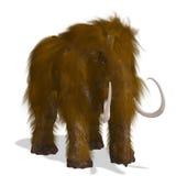 mamut Obrazy Stock