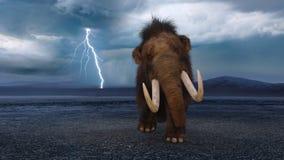 mamut obrazy royalty free