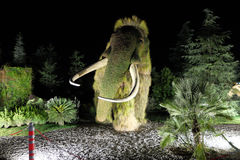 Mamut robić krzaki Botaniczny expo 2016 Obrazy Royalty Free