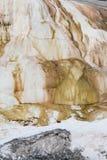 Mamutowa gorąca wiosna przy Yellowstone Obrazy Royalty Free