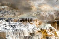 Mamutowe Gorące wiosny przy Yellowstone parkiem narodowym, Wyoming, usa obrazy stock