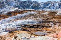 Mamutowe Gorące wiosny, Yellowstone park narodowy obraz royalty free