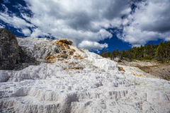 Mamutowe Gorące wiosny, Yellowstone park narodowy Zdjęcie Stock