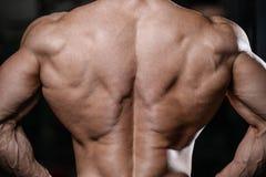 Man's för tillbaka muskel drar tillbaka kondition och bodybuilding Arkivfoto