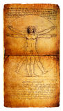 Man. Photo of the Vitruvian Man by Leonardo Da Vinci from 1492 on textured background royalty free stock photography