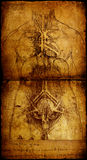 Man. Photo of the Vitruvian Man by Leonardo Da Vinci from 1492 on textured background stock photos