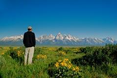 Man Admiring the Grand Tetons Royalty Free Stock Images
