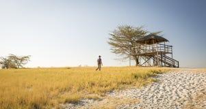 Man on African Safari. Man walks through long grass towards a raised hut at sunset while on safari in the Makgadikgadi Pans, Botswana, Africa Stock Photo