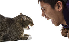 Man against Cat- Snarling Faces Stock Photos