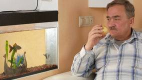Man aged mustache resting at home and eats an apple. He looks at fish in an aquarium and fruit bites stock video