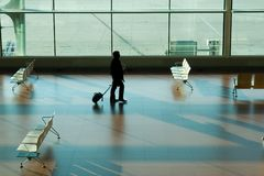 Man in airport terminal Stock Photos