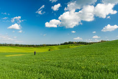 A man alone in a tuscan landscape with green wheat field and cypress. SIENA, ITALY - APRIL, 10, 2016 - A tourist set in a scenic landscape of the Tuscan royalty free stock images