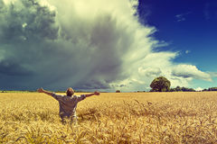 Man amomg field of wheat before thunderstorm Royalty Free Stock Photos