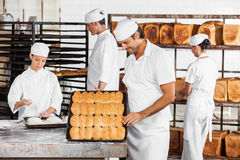 Man Analyzing Breads While Colleagues Working In Bakery. Mid adult men analyzing breads while colleagues working in bakery Royalty Free Stock Image