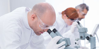 Man analyzing under microscope Royalty Free Stock Image
