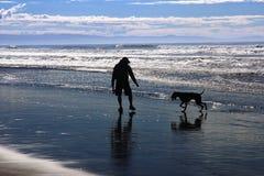 Free Man And Dog On Beach Stock Image - 8767371