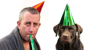 Man And Dog Partying Royalty Free Stock Images