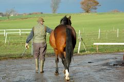 Man And Horse Stock Images