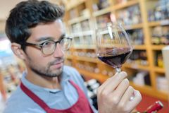 Man in apron examining glass red wine Stock Photos