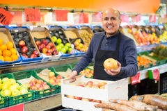 Man in apron selling fruits at market. Portrait of friendly smiling mature man in apron selling seasonal fruits at market Stock Images