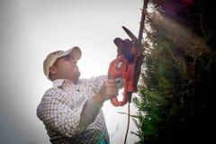 Man arbete i det trädgårds- klippet träden Royaltyfri Fotografi