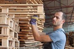 Man arraging pallets, horizontal shot Royalty Free Stock Photo