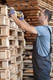 Man arranging pallets, vertical shot Royalty Free Stock Image