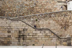 Man Ascending stone steps at Plasencia old town, Spain Stock Images