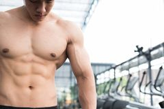Man athlete prepare for training in gym. bodybuilder male working out in fitness center. sport guy doing exercises in health club. Royalty Free Stock Images
