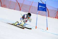 man athlete skier in super giant slalom during National Cup alpine skiing Royalty Free Stock Photography