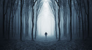Man att gå i en mörk skog för fairytalke med dimma