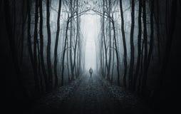 Man att gå på en mörk bana i en konstig mörk skog med dimma Royaltyfria Foton