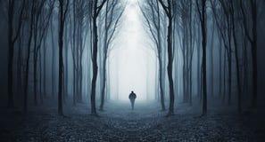 Man att gå i en mörk skog för fairytalke med dimma Royaltyfri Bild