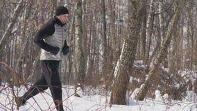 Man att jogga i vinterskog under morgongenomkörare Idrottsman nenmanspring lager videofilmer